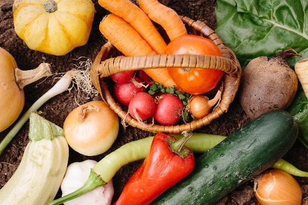冷え体質を変える食生活(前編)